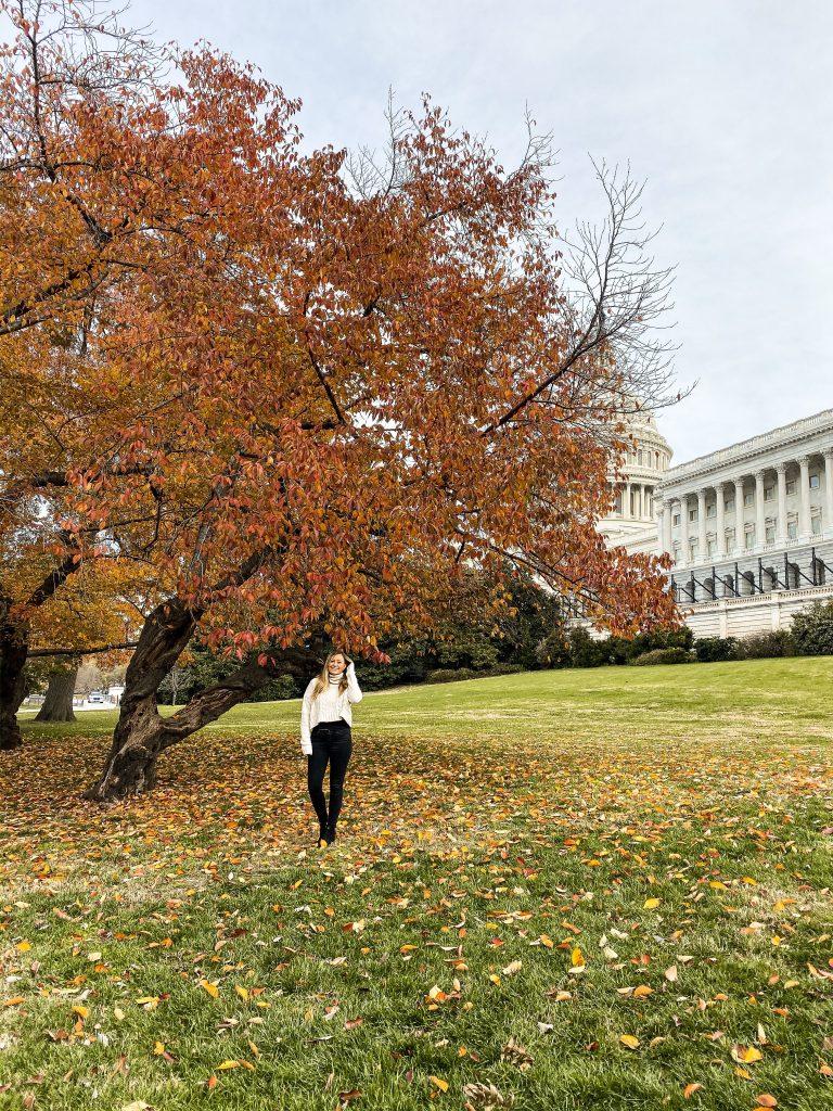 DC US Capitol