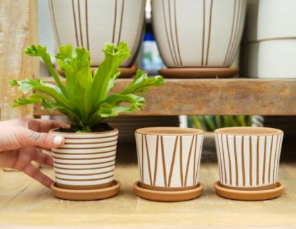 Tonkadale Brett Monahan Pottery